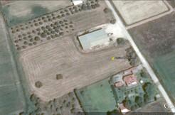 ΣΑΒΑΛΙΑ Αγροτεμάχιο 5665τμ κοντά στο ΚΤΕΟ