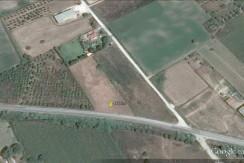 Οικόπεδο 4400τμ επί επαρχιακού δρόμου Αμαλιάδας -Σαβαλίων