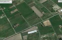 ΚΟΥΡΟΥΤΑ -ΜΑΡΑΘΙΑ Αγροτεμάχιο 33 στρ με μεγάλη πρόσοψη NEA TIMH